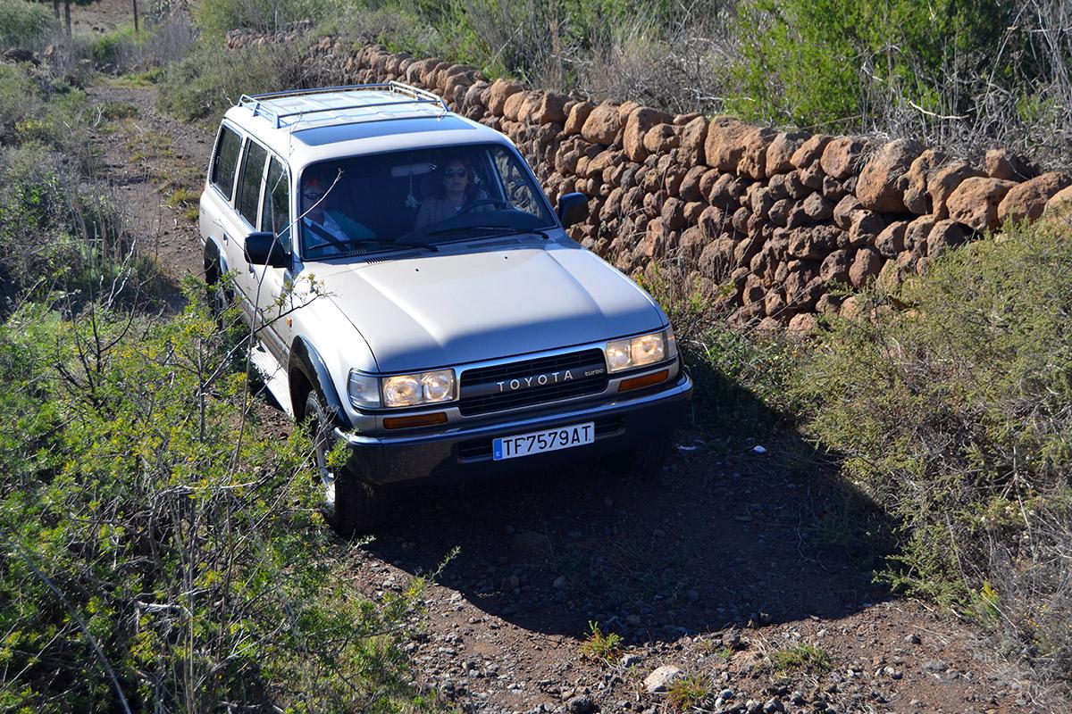 Toyota Land Cruiser HDJ80, consejos de compra (2)