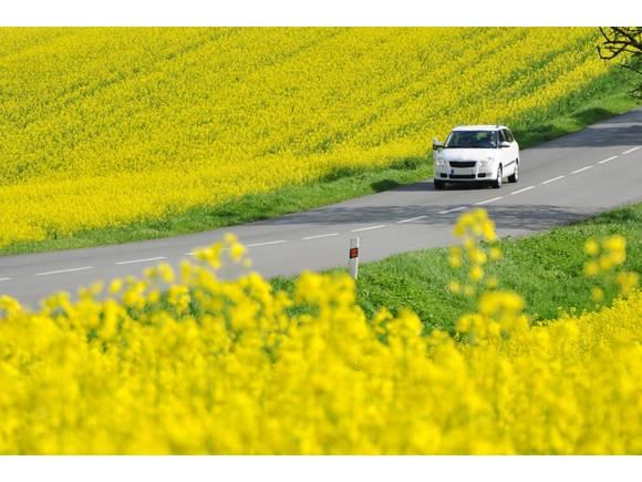 ¿Influye la astenia primaveral en la conducción?