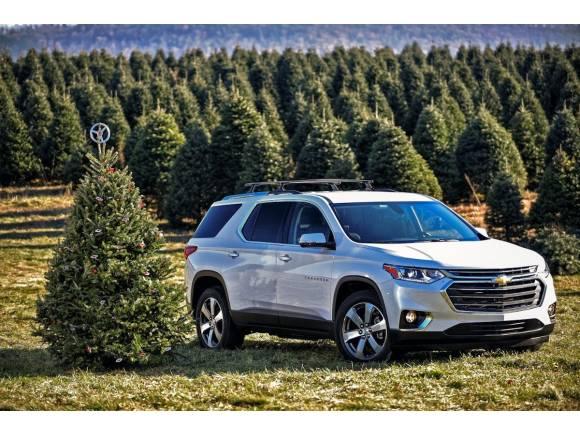 Cómo llevar un árbol de navidad en el coche