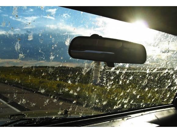 Cómo cuidar el parabrisas del coche en verano
