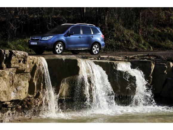 Nuevo Subaru Forester 2013 el auténtico todocamino