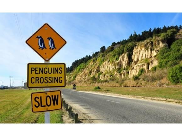 Señales de tráfico curiosas por el mundo