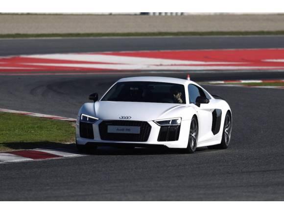Las mejores pruebas de coches de 2015