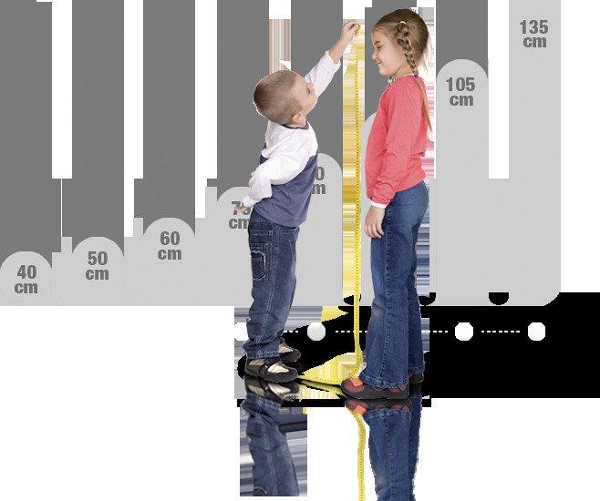 altura sillita infantil