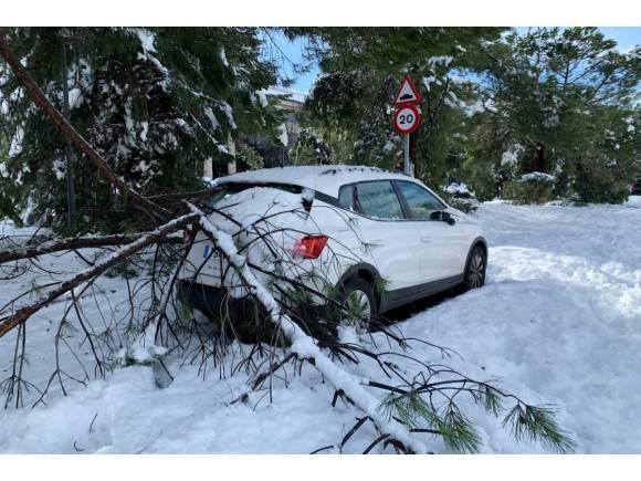 ¿Qué seguro cubre los daños producidos por Filomena?