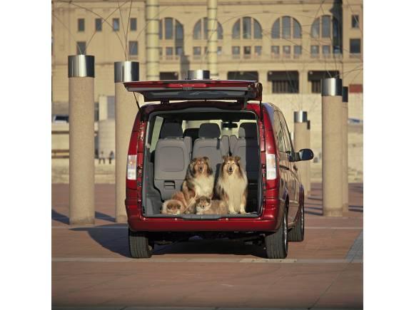 Cómo llevar con seguridad a los perros en el coche