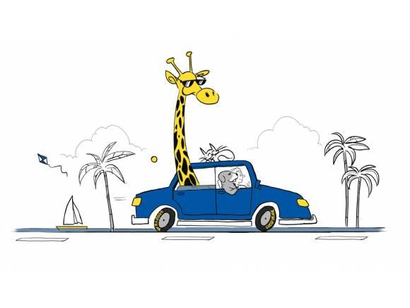 Consejos para viajar por carretera en verano